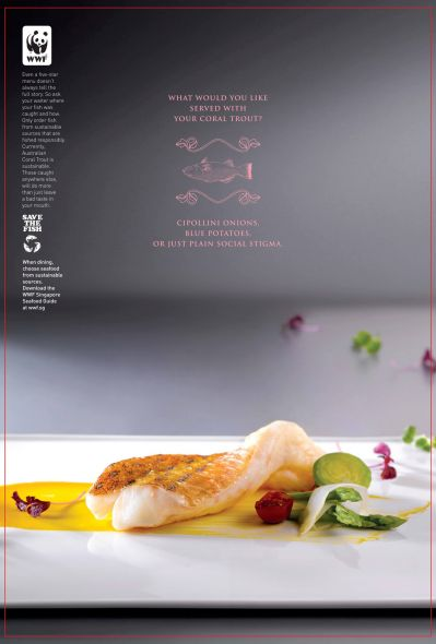 WWF Singapore: Enter the World of Sustainable Seafood, Coral trout