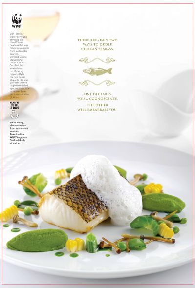 WWF Singapore: Enter the World of Sustainable Seafood, Seabass